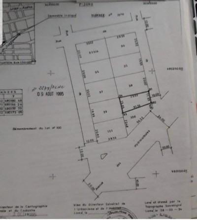 3/4 lot ( 415m2 ) avec 3tampons + titre foncier en cour