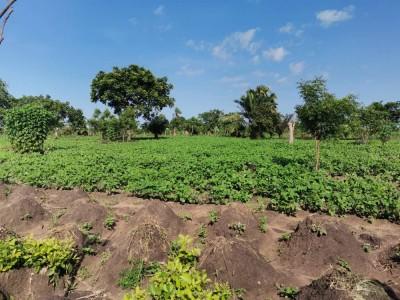 20 hectares avec barrage d'eau et titre foncier