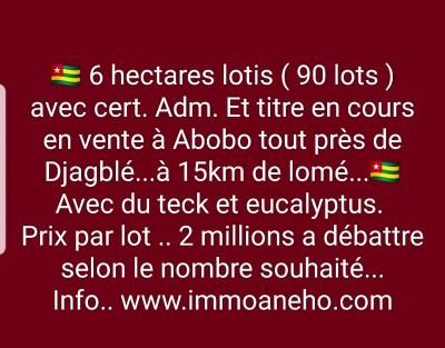 6 hectares ( 90 lots ) lotis + cert. adm..